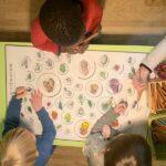 Kinder malen, Obst